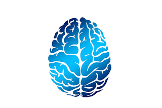 brain-2836401__340.png