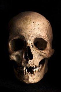 skull-765477__340.jpg